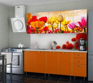Кухня Сиена с фурнитурой Blum / фотопечать